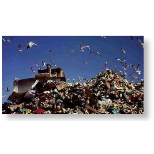 Rubbish dumps