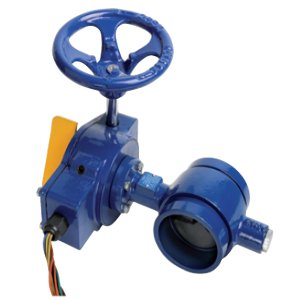 Butterfly Valve - Swing Check valve