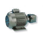 EL200 - EL201 Rotary motor pumps